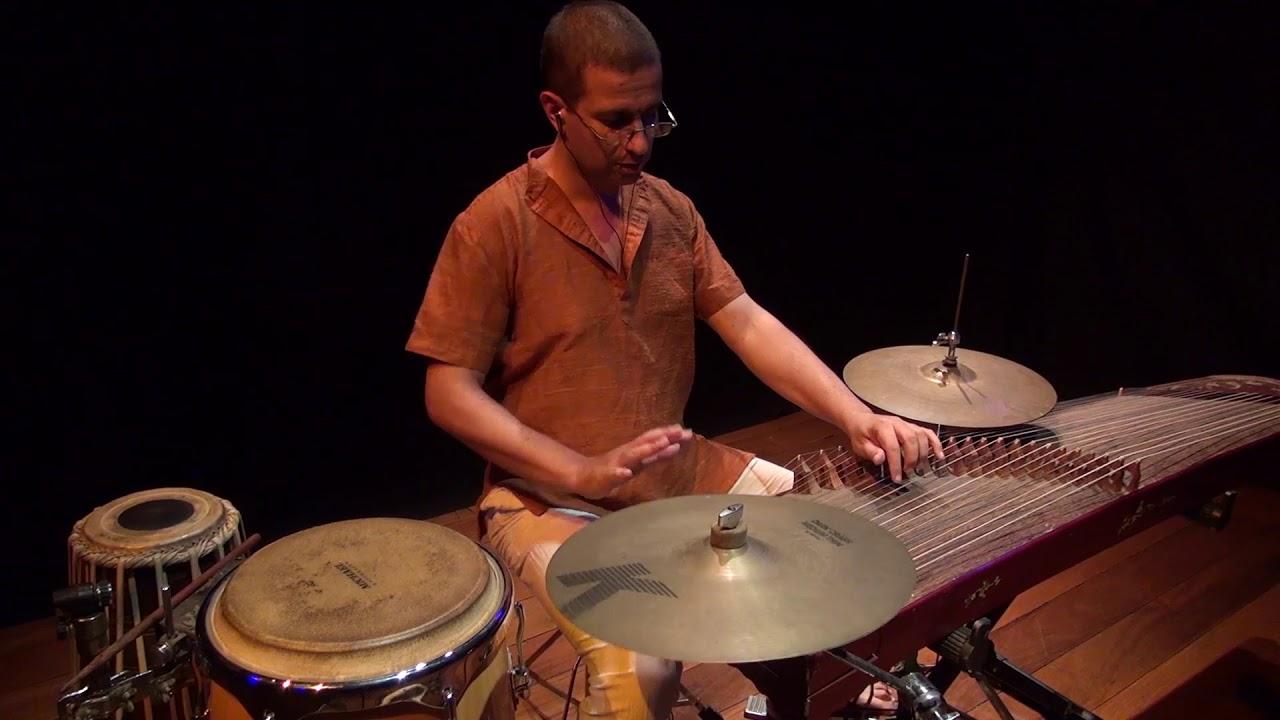 Ricardo Passos - Adi Talam - Takadimi Takajunu - Chatusram Nadai