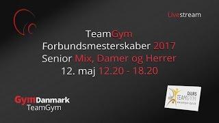 teamgym forbundsmesterskaber 2017 senior mix damer og herrer