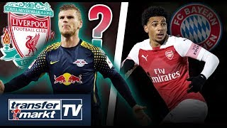 Nächster Top-Klub jagt Timo Werner – Arsenal-Talent Amaechi zu Bayern?  | TRANSFERMARKT
