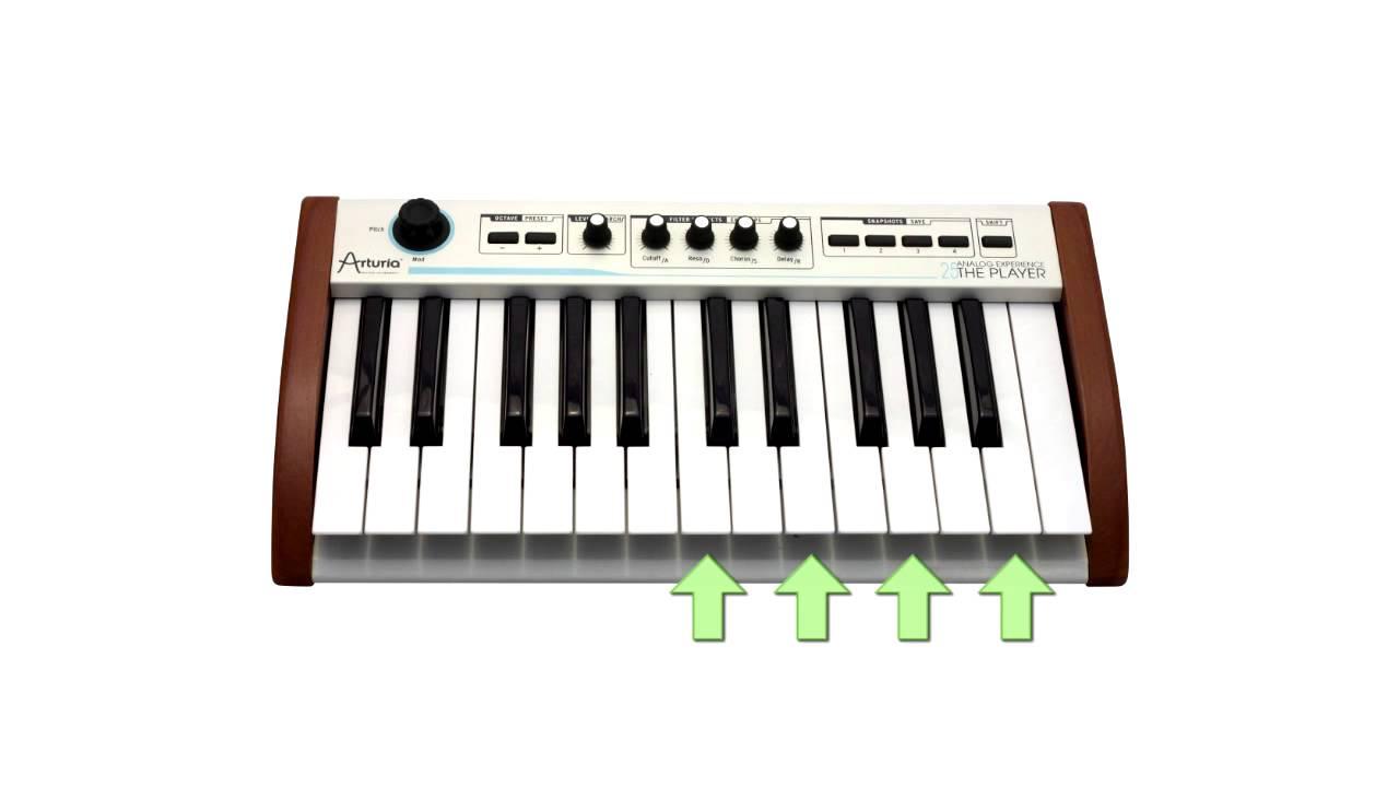 Урок №3. Как играть аккорды на пианино, фортепиано или ...