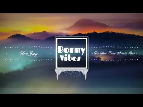 TeeJay - DoYouEvenAviciiBro