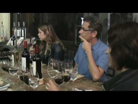 Ruta del Vino Casablanca Tour. Turistik, Santiago, Chile