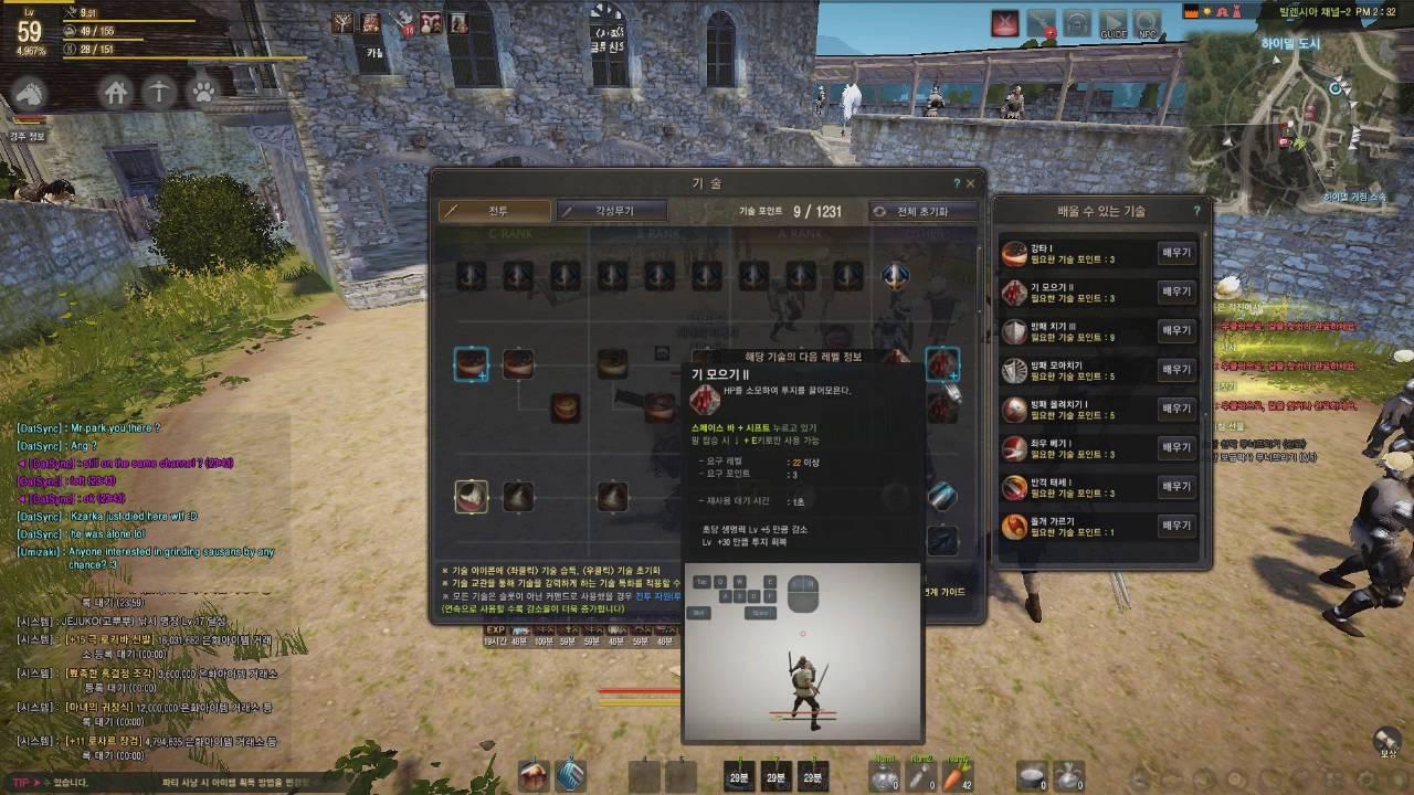 Black Desert Online - Warrior Awakening Build Guide