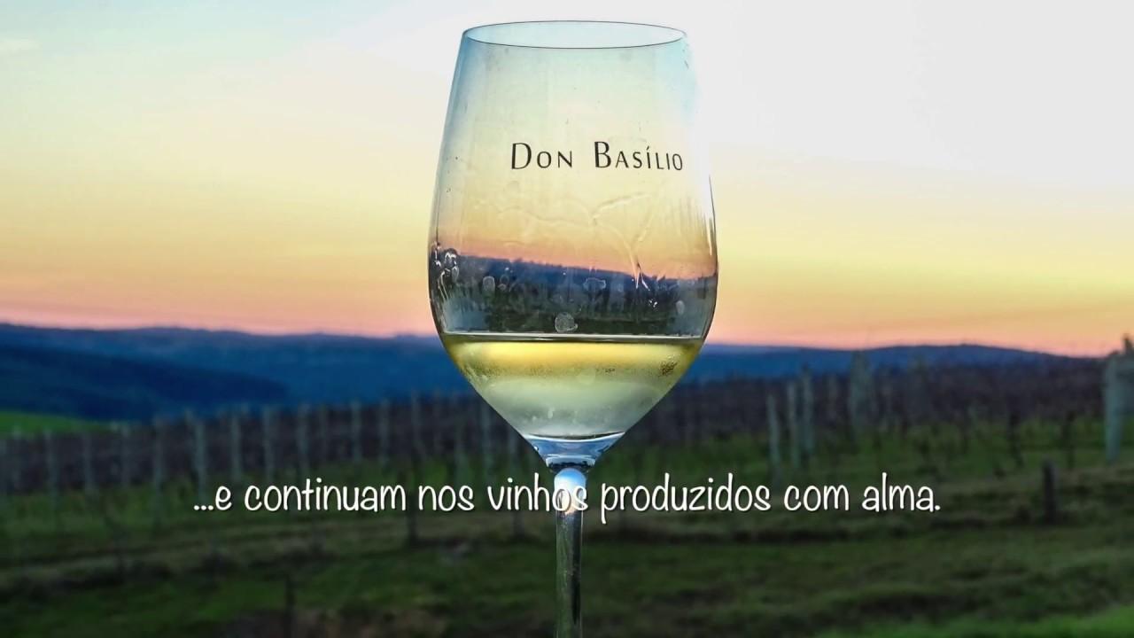 """Vinhedo Don Basílio  - """"Vinhos feitos com a alma""""-  By Fly Camera Pelotas"""