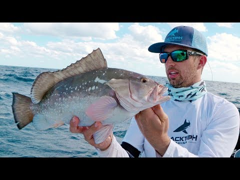 Bottom Fishing For Snappers, Groupers And Kite Fishing For Sailfish - 4K