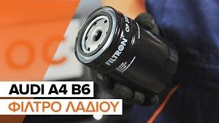 Πώς αλλαζω Φίλτρο λαδιού AUDI A4 (8E2, B6) - δωρεάν διαδικτυακό βίντεο