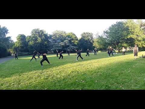 Self-practice: Xia Quan/Hop Gar Xiao Lo Hang(beginners)初級班自練: 俠家小羅漢