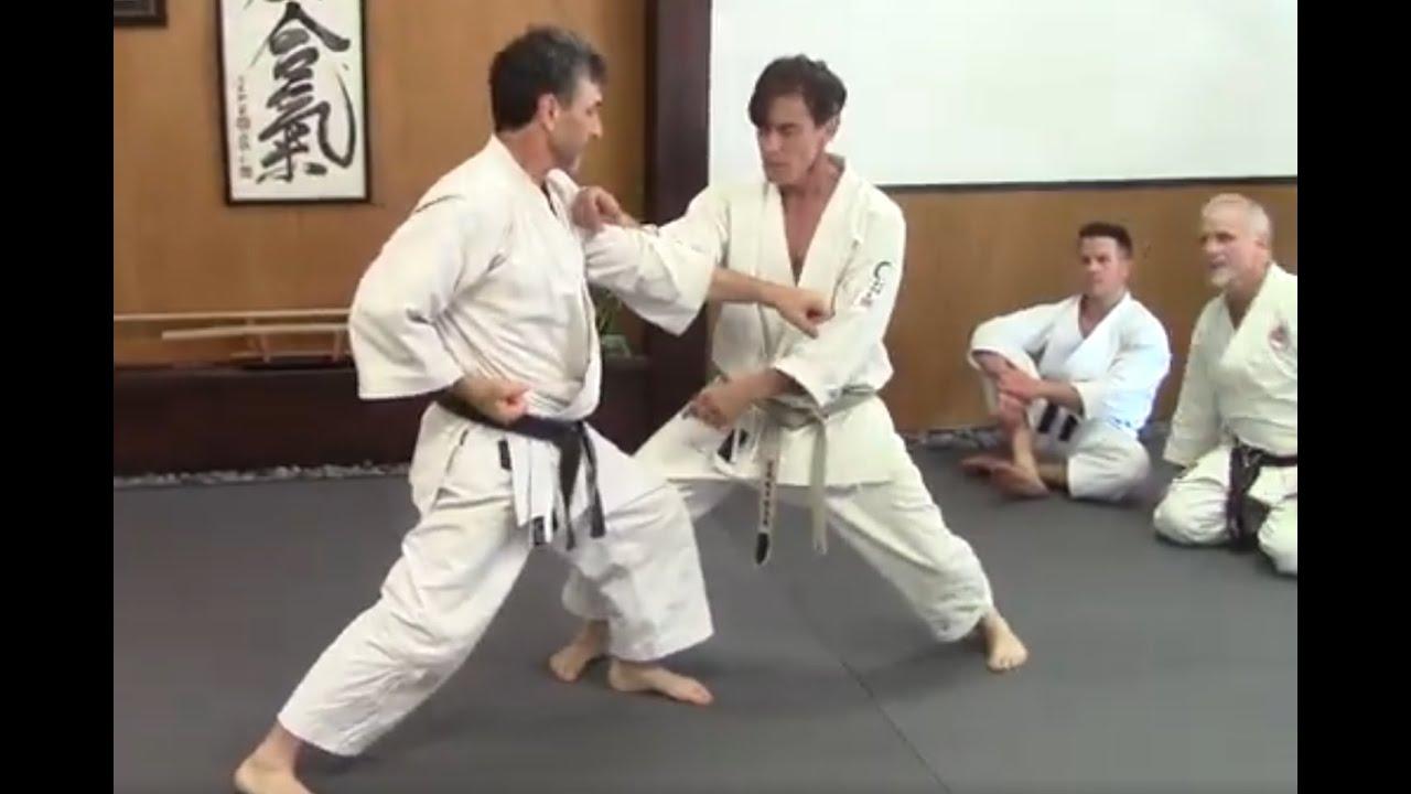 Training with rick hotton sensei, remote dojo membership program