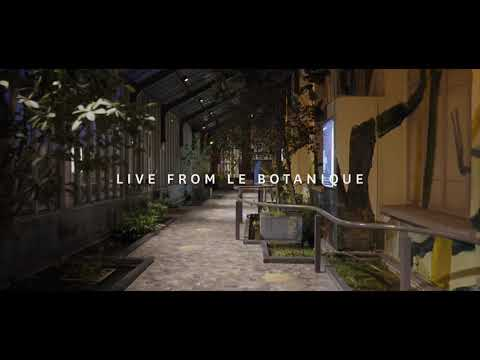 Freya Ridings - Castles (Live At Botanique, Belgium)