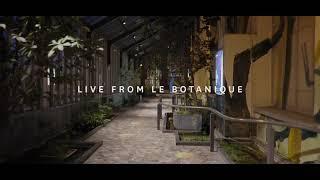 Freya Ridings - Castles (Live At Botanique, Belgium) Video