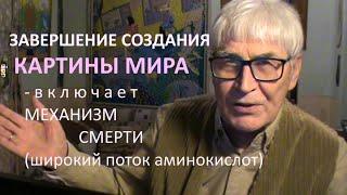 ЗАВЕРШЕНИЕ картины мира и СМЕРТЬ * Muzeum Rondizm TV