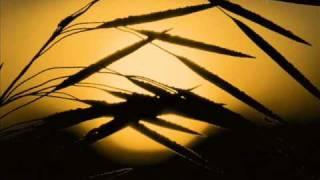 Luke Chable and Danny Bonici - Ride (james holden remix)