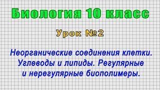 Биология 10 класс (Урок№2 - Неорганические соединения клетки. Углеводы и липиды. Биополимеры.)