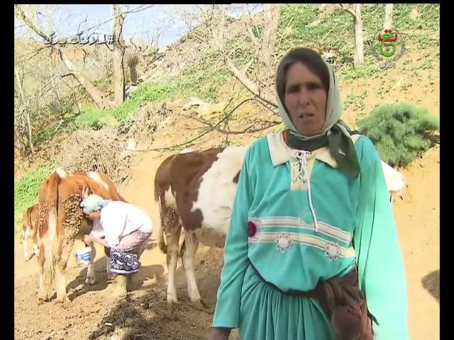 الأختان آسيا ويامنة.. مثال التحدي لتنمية الريف بولاية المدية
