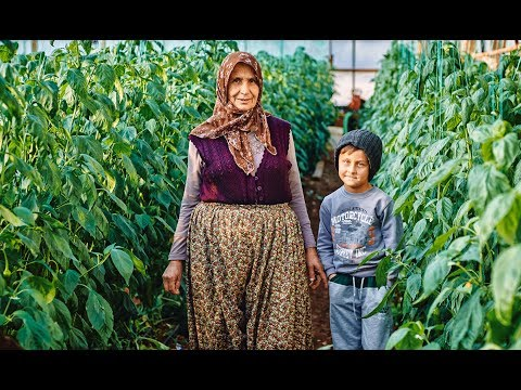 Turkish village life. Життя в турецькому селі