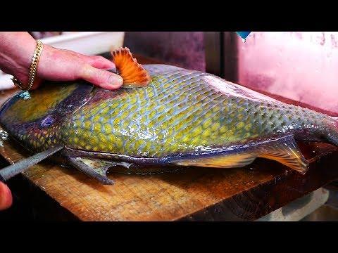 Japanese Street Food - GIANT TITAN TRIGGERFISH Sashimi Seafood Okinawa Japan