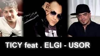 ELGI feat TICY - Usor 2014