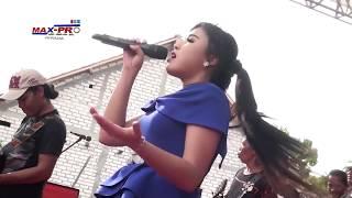 Rere Amora - Suket Teki (Monata Live Rembang 2016)