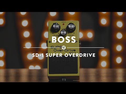 Boss SD-1 Super Overdrive | Reverb Demo Video