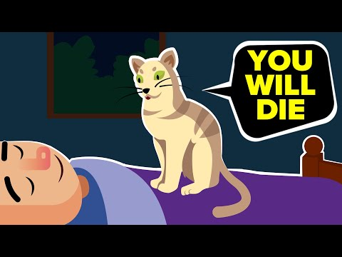 How Your Pet Is Trying To Warn You That You Are Going To Die