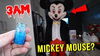 ORDERING MICKEY MOUSE POTION FROM THE DARK WEB AT 3AM!! *GIANT MICKEY MOUSE*