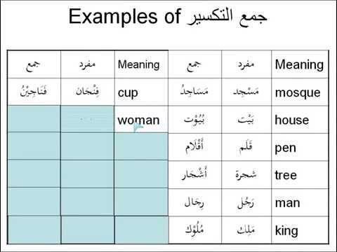 Examples of broken plurals