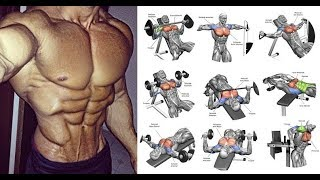 BEST BODY BUILDINGS EXERCISE TIPS TO GAIN YOUR MUSCLES.  SAHI EXERCISE KR KE APNI MUSCLES KA SIZE BA