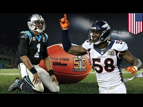 Broncos win Super Bowl 50: Denver D annihilates Cam and Panthers for 24-10 win