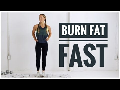 Low Impact FAT BURNING HIIT Workout // No Jumping Workout!