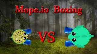 Mope.io in a boxing ring || Slain.io