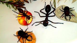 Игрушки. Жук и Вредный муравей. Насекомые. Видео для детей