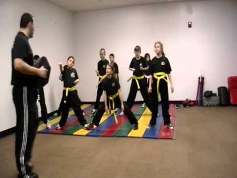 Freestyle Martial Arts Academy School of Karate and Kickboxing of Lynbrook and East Rockaway NY