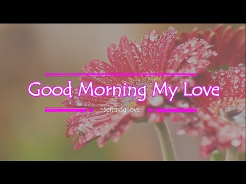 Good Morning Love Greetings Good Morning My...