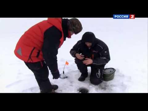 Ловля судака на Яузском водохранилище