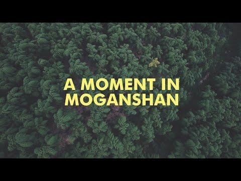 A Moment in MOGANSHAN China