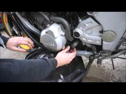 1994 FZR600 Restoration Part 2: Fluid change and plans