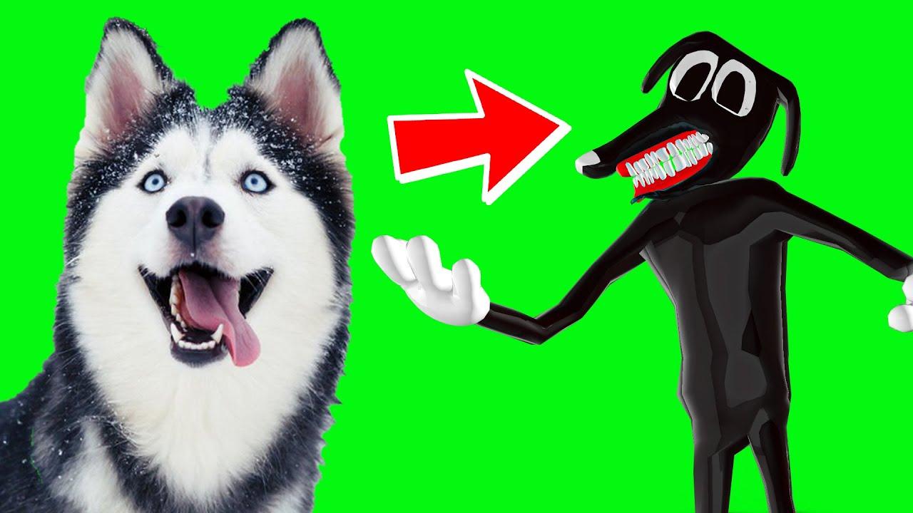МОЯ КАРОЛИНА - CARTOON DOG!! ЛАМПОГОЛОВЫЙ ПРЕДАЛ СИРЕНОГОЛОВОГО И НАС! Хаски Бублик Говорящая собака