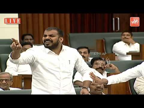 Anil Kumar Yadav VS Buchaiah Chowdary Fight In AP Assembly   YS Jagan Vs Chandrababu Naidu   YOYO TV