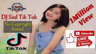 DJ Siul~Tik Tok