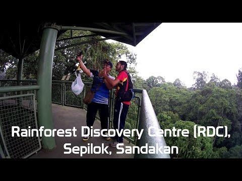 Rainforest Discovery Centre (RDC), Sepilok, Sandakan, Sabah, SJ5000+