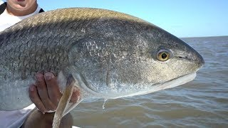 I Love This Fishing - Part 2 (Redfish Challenge)
