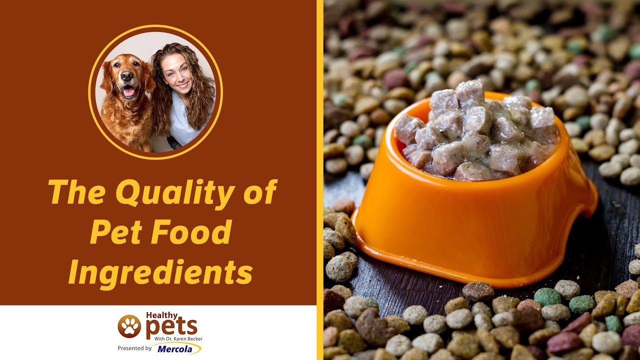 The Quality of Pet Food Ingredients (Part 1 of 2)