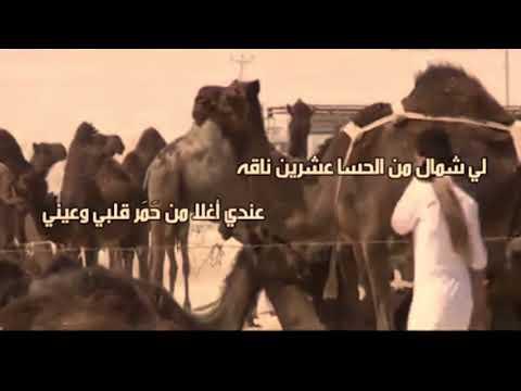 شيلة شاعر قطري مغبون من تميم: من خدع سلمان لا يامن طراقه