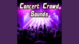Large Arena Concert Crowd Cheering & Applauding 1