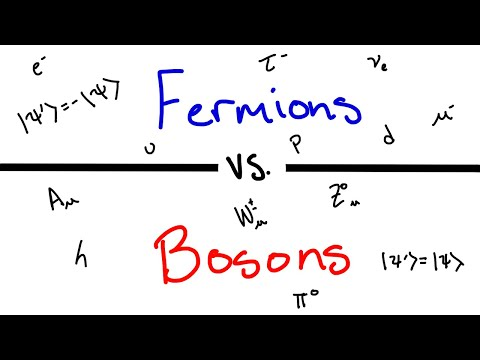 What's The Difference Between Fermions And Bosons?