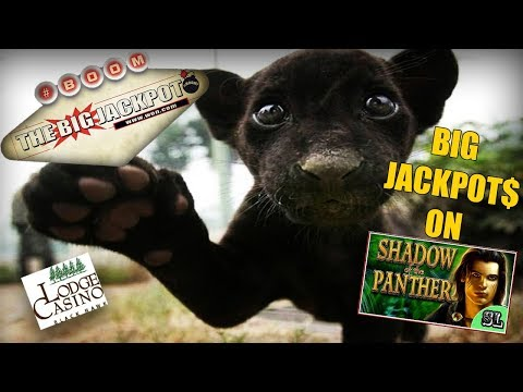 ✦ SHADOW OF THE PANTHER ✦  DOUBLE BIG JACKPOT$