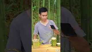 Bamboo lifestyle #bamboolife