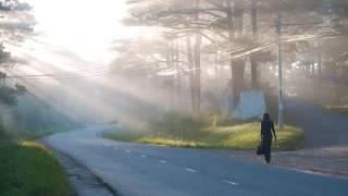 Thành phố sương AC&M