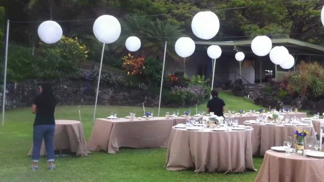 Hawaii Wedding Venue Kualoa Ranch Paliku Gardens Youtube