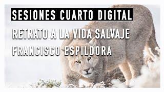 #SesionesCuartoDigital Capítulo 2: Francisco Espíldora